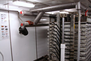 Insulation of refrigeration pipe work on plate freezers in fishing boat factory